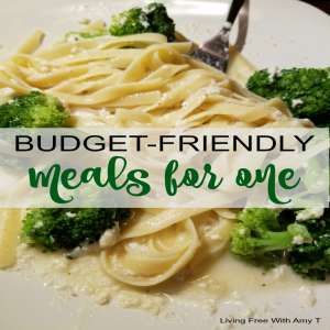 Budget Friendly Meals For One