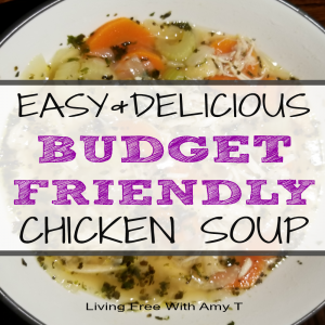 Easy, Delicious, Healthy, Budget-Friendly Chicken Vegetable Soup