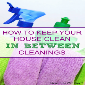 How To Keep Your House Clean In Between Cleanings