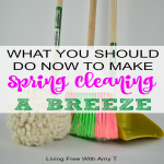 What You Should Do Now To Get A Head Start On Spring Cleaning