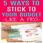 5 Tips To Help You Stick To Your Budget